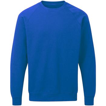 Textiel Heren Sweaters / Sweatshirts Sg Raglan Koninklijk