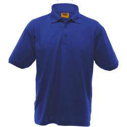Textiel Heren Polo's korte mouwen Ultimate Clothing Collection UCC004 Koninklijk