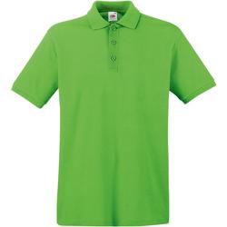 Textiel Heren Polo's korte mouwen Fruit Of The Loom Premium Lime