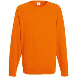 Textiel Heren Sweaters / Sweatshirts Fruit Of The Loom 62138 Oranje