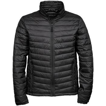 Textiel Heren Dons gevoerde jassen Tee Jays Padded Zwart