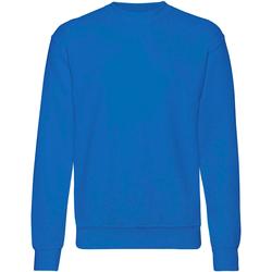 Textiel Heren Sweaters / Sweatshirts Fruit Of The Loom 62202 Royaal Blauw