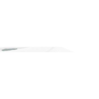 Textiel Heren Sweaters / Sweatshirts Fruit Of The Loom Raglan Wit