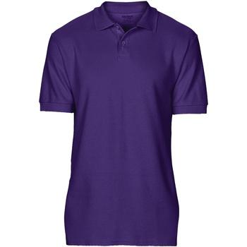 Textiel Heren Polo's korte mouwen Gildan Softstyle Paars