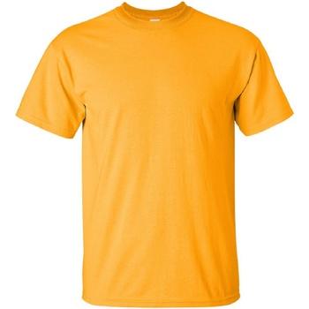 Textiel Heren T-shirts korte mouwen Gildan Ultra Goud