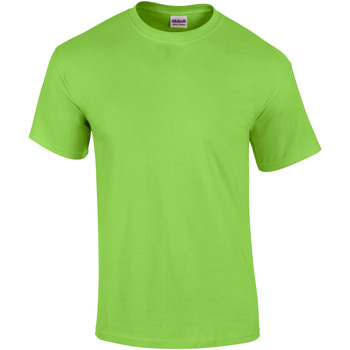 Textiel Heren T-shirts korte mouwen Gildan Ultra Kalk