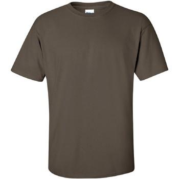 Textiel Heren T-shirts korte mouwen Gildan Ultra Olijf