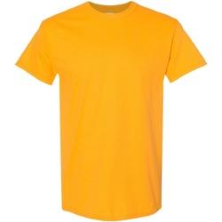 Textiel Heren T-shirts korte mouwen Gildan Heavy Goud