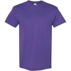 Textiel Heren T-shirts korte mouwen Gildan Heavy Lila