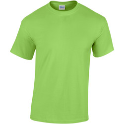 Textiel Heren T-shirts korte mouwen Gildan Heavy Kalk