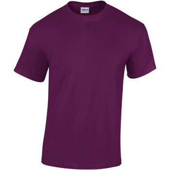 Textiel Heren T-shirts korte mouwen Gildan Heavy Paars