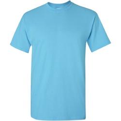 Textiel Heren T-shirts korte mouwen Gildan Heavy Sky