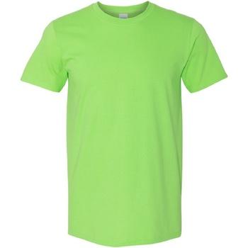 Textiel Heren T-shirts korte mouwen Gildan Soft-Style Kalk