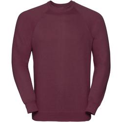 Textiel Heren Sweaters / Sweatshirts Russell Classics Bourgondië