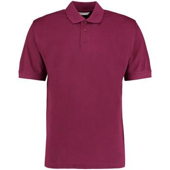 Textiel Heren Polo's korte mouwen Kustom Kit Klassic Bourgondië
