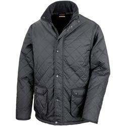 Textiel Heren Dons gevoerde jassen Result Cheltenham Zwart