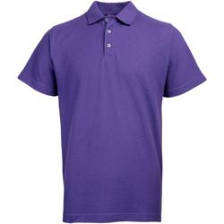 Textiel Heren Polo's korte mouwen Rty Workwear Heavyweight Paars