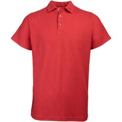 Textiel Heren Polo's korte mouwen Rty Workwear Heavyweight Rood