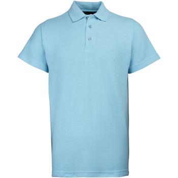 Textiel Heren Polo's korte mouwen Rty Workwear Heavyweight Sky