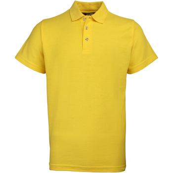 Textiel Heren Polo's korte mouwen Rty Workwear Heavyweight Zonnebloem