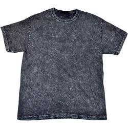 Textiel Heren T-shirts korte mouwen Colortone Mineral Zwart