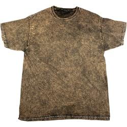 Textiel Heren T-shirts korte mouwen Colortone Mineral Bruin