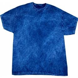 Textiel Heren T-shirts korte mouwen Colortone Mineral Marine