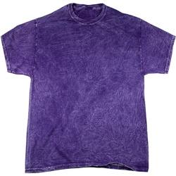 Textiel Heren T-shirts korte mouwen Colortone Mineral Paars