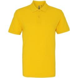 Textiel Heren Polo's korte mouwen Asquith & Fox AQ010 Zonnebloem