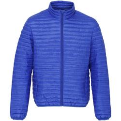 Textiel Heren Dons gevoerde jassen 2786 TS018 Koninklijk