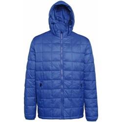 Textiel Heren Dons gevoerde jassen 2786 TS025 Koninklijk