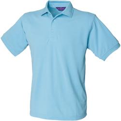 Textiel Heren Polo's korte mouwen Henbury Pique Sky