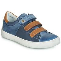 Schoenen Jongens Lage sneakers GBB POMMOR Blauw / Brown