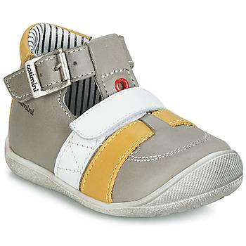 Schoenen Jongens Sandalen / Open schoenen Catimini TIMOR Grijs / Mosterd