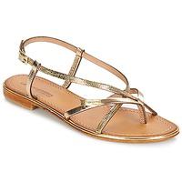 Schoenen Dames Sandalen / Open schoenen Les Tropéziennes par M Belarbi MONACO Goud / Serpent