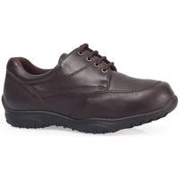 Schoenen Derby Calzamedi S  M MARRON