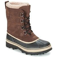 Schoenen Heren Snowboots Sorel CARIBOU Brown