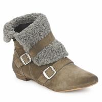 Schoenen Dames Laarzen Bronx CREPOU Brown / Grijs