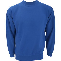 Textiel Sweaters / Sweatshirts Ultimate Clothing Collection UCC001 Koninklijk