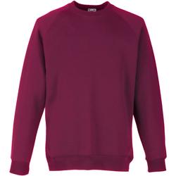 Textiel Kinderen Sweaters / Sweatshirts Fruit Of The Loom Raglan Bordeux