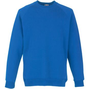 Textiel Kinderen Sweaters / Sweatshirts Fruit Of The Loom Raglan Royaal Blauw