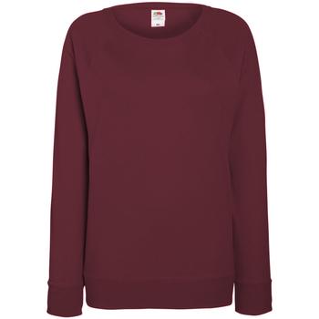 Textiel Dames Sweaters / Sweatshirts Fruit Of The Loom Raglan Bordeaux