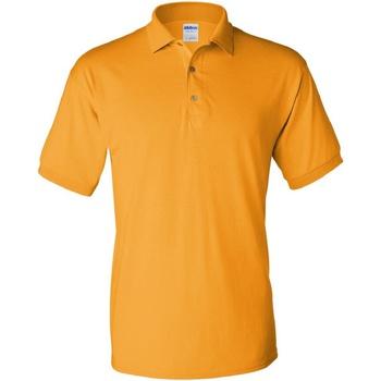 Textiel Heren Polo's korte mouwen Gildan Jersey Goud