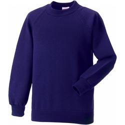Textiel Kinderen Sweaters / Sweatshirts Jerzees Schoolgear Raglan Paars