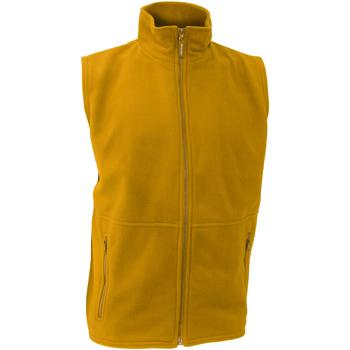 Textiel Heren Vesten / Cardigans Result R37X Geel