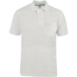 Textiel Heren Polo's korte mouwen Duke D555 Grijs