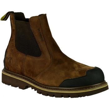 Schoenen Heren Laarzen Amblers 225 S3 WP Bruin