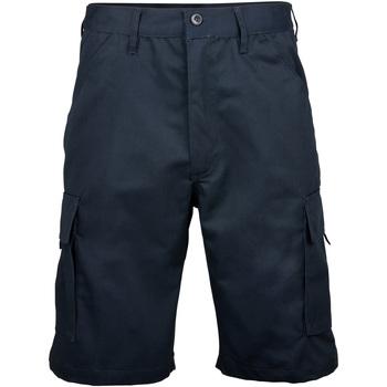 Textiel Heren Korte broeken / Bermuda's Rty Workwear Work Marine