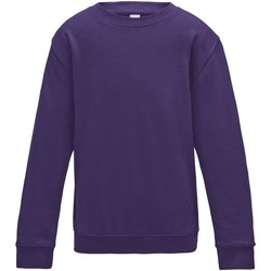Textiel Kinderen Sweaters / Sweatshirts Awdis JH30J Paars