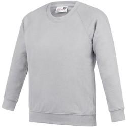 Textiel Kinderen Sweaters / Sweatshirts Awdis Academy Grijs